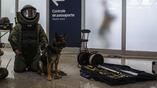 В бразильском аэропорту дежурят саперы с собаками в полной боеготовности