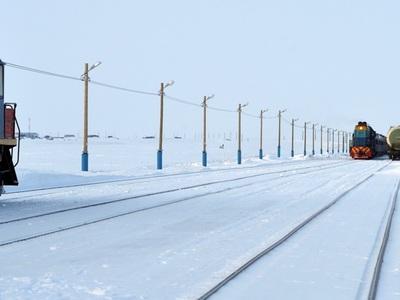 Человек? Снеговик? Тормозим!: о ЧП на железной дороге в Германии