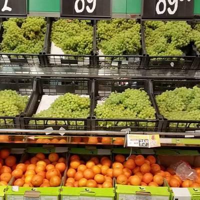 Запрет на поставки овощей из Египта будет снят 1 октября