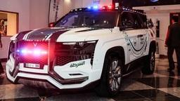 Полиция Дубая обзавелась