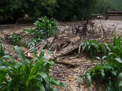 Мощный сель стал причиной гибели десятков людей на Шри-Ланке