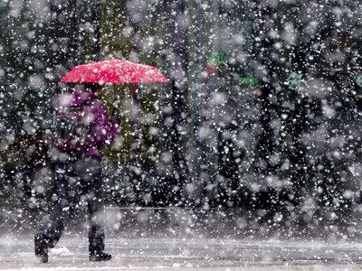 Капризная погода в выходные предвещает потепление