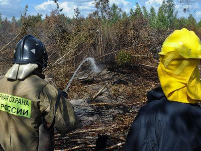 В Шатуре произошел торфяной пожар