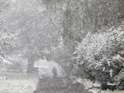 Температура в Москве опустится ниже нормы