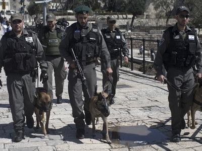 Израиль предупредил об угрозе терактов на Синае