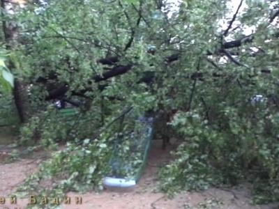 Ураган в Псковской и Тверской областях: есть жертвы и разрушения