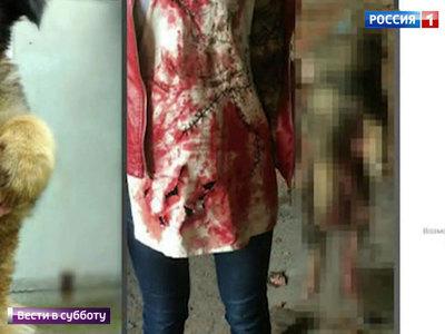 Хабаровские живодерки признали вину