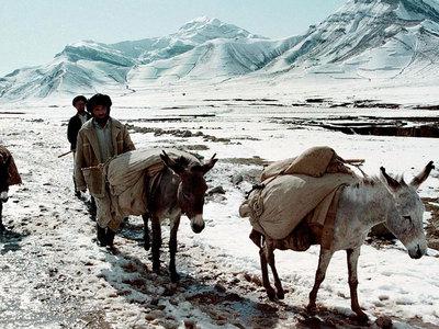 Число жертв афганского снега возросло до 54