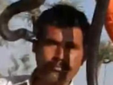 Смертельный поцелуй: в Индии турист умер после фотосессии с коброй