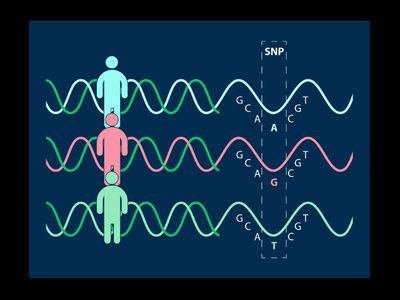 """Генетики """"разоблачили"""" букву в геноме, замена которой снижает риск аутоиммунных заболеваний"""