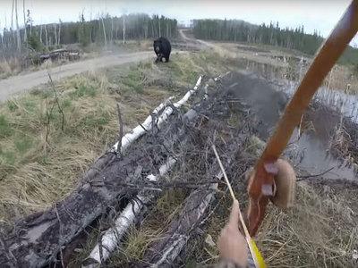 Канадец пытался отбиться от медведя на охоте луком и стрелами. Видео
