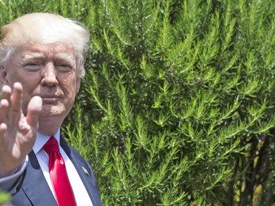 На саммите G7 Трамп не поднимал тему взаимоотношений с Россией