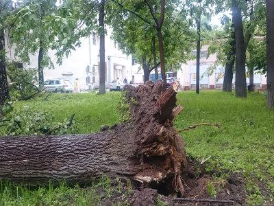 Росгидромет ответил на претензии Генпрокуратуры о неточных прогнозах погоды