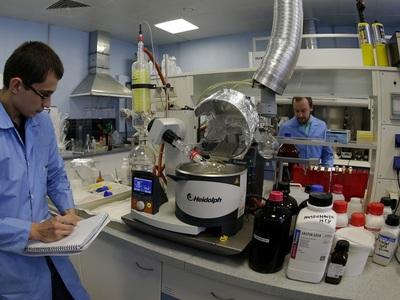 Российские учёные протестировали антиоксидант, заживляющий раны при диабете