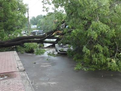 В Липецкой области устраняют последствия непогоды