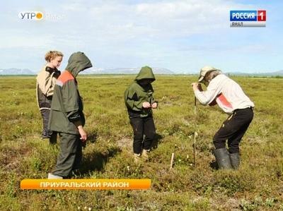 Студенты из Москвы, США и Европы приехали на Ямал изучать вечную мерзлоту