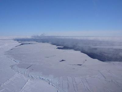 В Антарктиде образовалась полынья размером в две Московских области