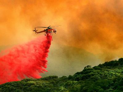 Калифорния: число жертв природных пожаров возросло