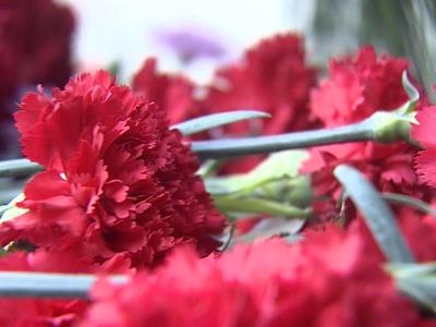 Семьям погибших в авиакатастофе под Нельканом выделили более 6 миллионов рублей