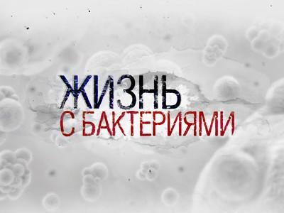 """Фильм телеканала """"Наука"""" стал победителем премии """"Лавр"""""""