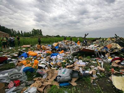 Родственники жертв крушения MH17 подали на Путина иск в ЕСПЧ