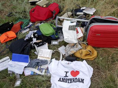 Пропал немецкий сыщик, подозреваемый в контактах с виновниками крушения MH17
