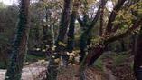 парк около пещеры Аггитис