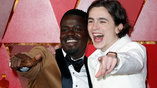 Daniel Kaluuya and Timothee