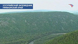 В Приморье исчезает лес. Вместе с ним - кормовая база