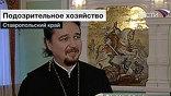 Идеологи новой агрокультуры распространяют совсем не любовь к чистому воздуху, считают православные священники