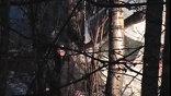 """Отказ двигателя или плохая погода - в Москве выясняют, почему Ту-204 """"Ульяновских авиалиний"""" приземлился в лесу, а не на посадочной полосе Домодедова. Лайнер не дотянул до аэропорта полтора километра"""