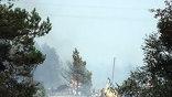 """Такого числа крупных очагов пожара Россия, пожалуй, ещё не видела ни разу (фото - """"Мобильный репортер"""")"""