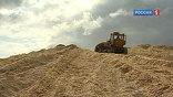 Весной в Иркутской области начнут строить новый перерабатывающий завод. Кора, сучки, опилки, корни - все станет сырьем для производства биотоплива