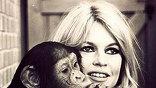 фото из личного архива Брижит Бардо