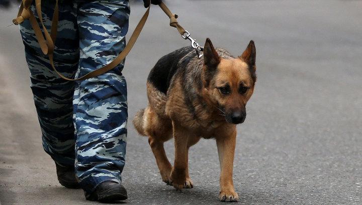 """Эвакуация """"Охотного ряда"""": телефонный террорист блефовал"""