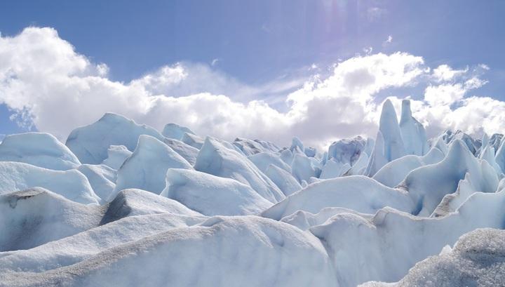 Внезапно: в полярных льдах найдены жизнеспособные бактерии. Почему это важно для экологов и астробиологов?