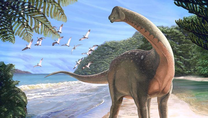 Долгожданный скелет рассказывает о туманной истории африканских динозавров