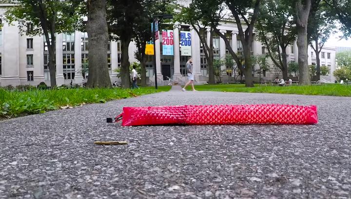 В Гарварде сделали чешуйчатого робота-змею. Видео