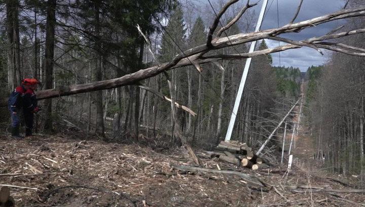 Электроснабжение в Рязанской и Владимирской областях восстановлено