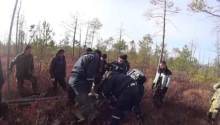 """""""У нее не было сил кричать"""": спасение заблудившейся женщины попало на видео"""