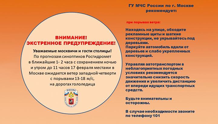 МЧС: в Москве до утра ожидается сильный ветер