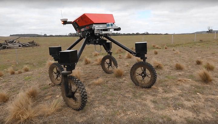 В Австралии сделали робота для прополки полей