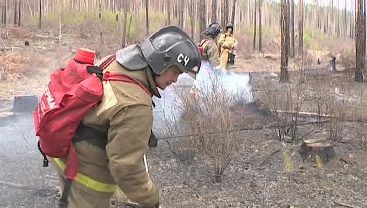 Пожары в России: 2 500 человек тушат более 6 тысяч гектаров леса