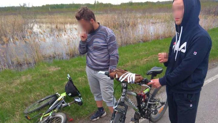 Новосибирские меломаны украли у школьников велосипеды ради поездки на концерт в Москву