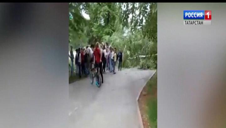 СК начал проверку по факту падения дерева на школьников в Альметьевске