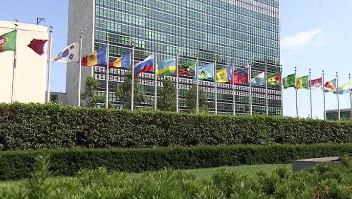 РФ и КНР наложили вето в Совбезе ООН на проект о продлении трансграничной помощи Сирии