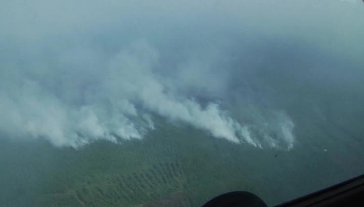 Красноярские леса продолжают гореть