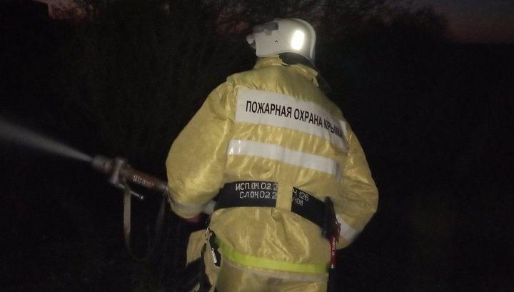 Один человек погиб в крупном лесном пожаре в Крыму