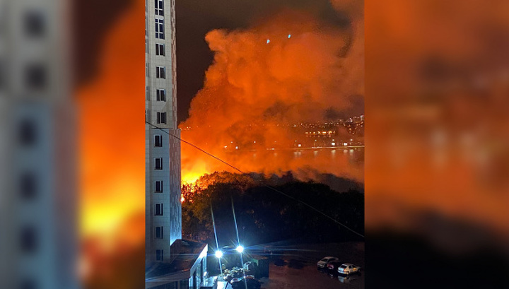 Крупный пожар на берегу воронежского водохранилища сняли на видео