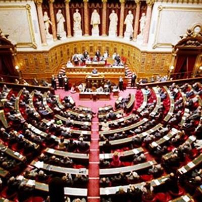 Парламент Франции предложил переписать текст статьи